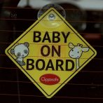 Clippasafe Baby/Child on Board #53