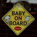 Clippasafe Baby/Child on Board #53